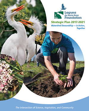 Laguna Foundation Strategic Plan cover
